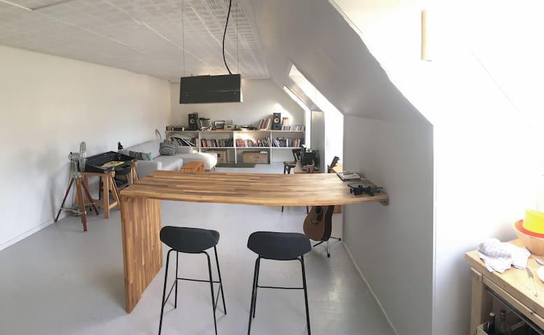 Penthouse in Copenhagen