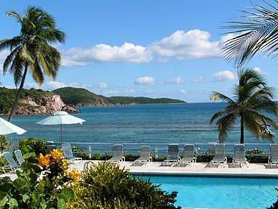 Rooms For Rent In St Thomas Virgin Islands