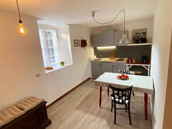 Cozy Apartment in a historic Villa