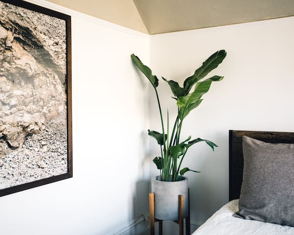 Plant and art in the Corner View Bedroom