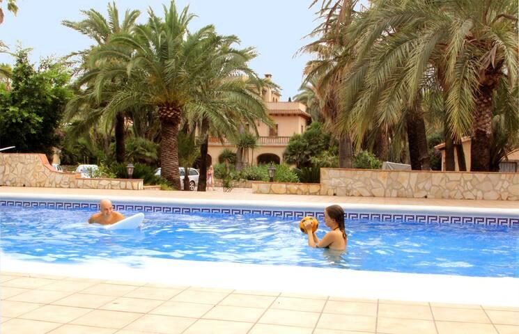 Doppelzimmer Budget, Palmengarten mit Pool am Meer
