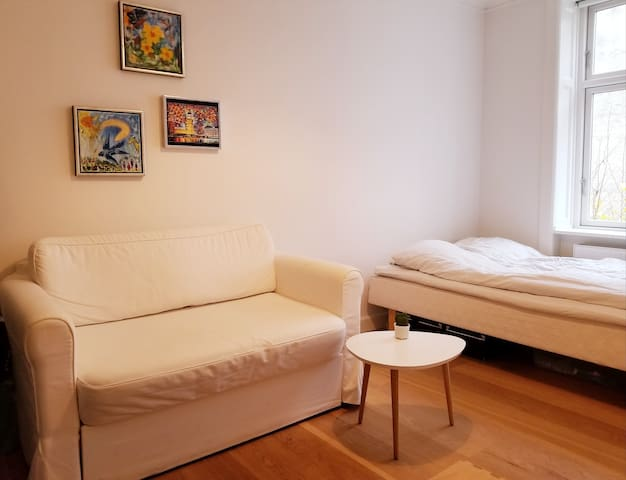Cosy and quiet room in the heart of Nørrebro, CPH