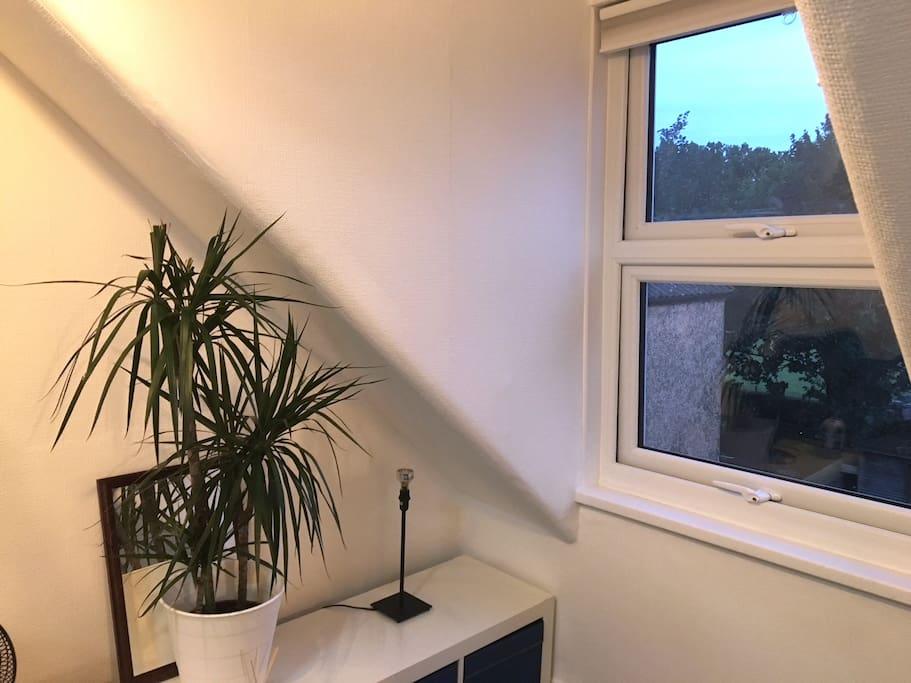 XL Double Bedroom Window