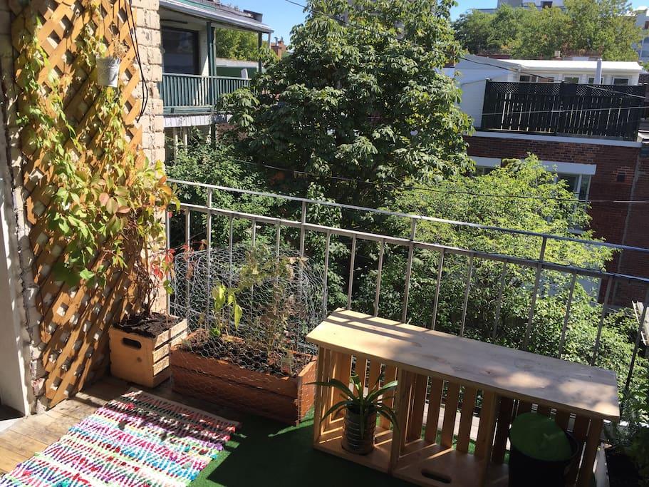 Balcon arrière - Rear Balcony