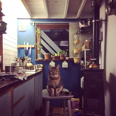 Bunk in the kitchen