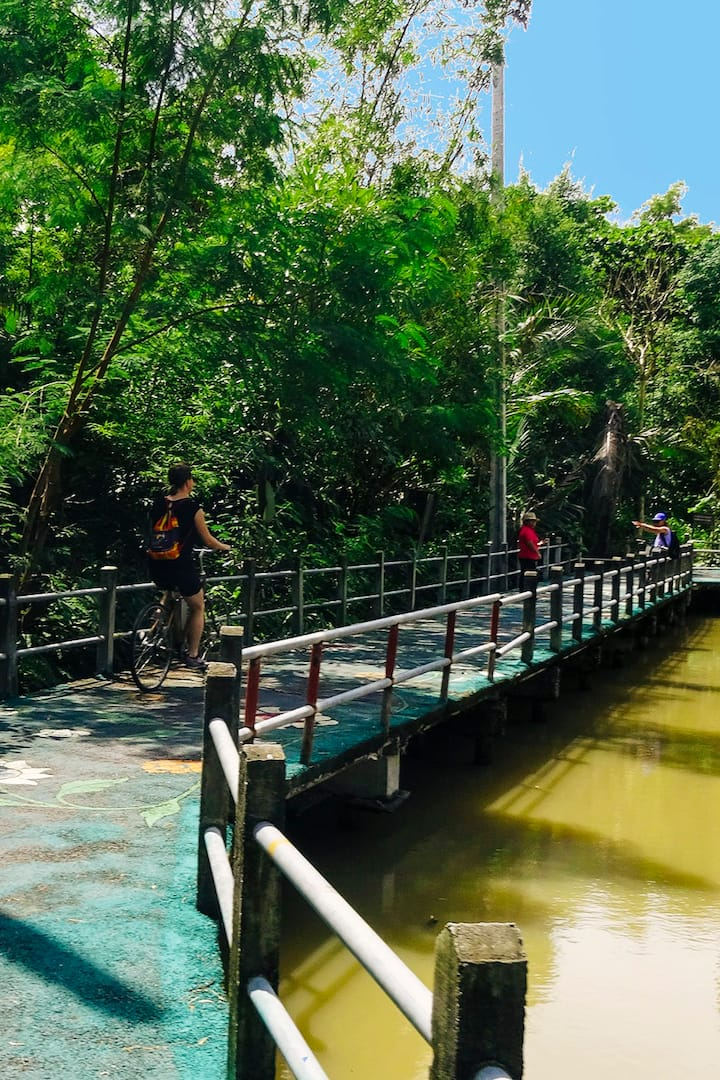 The green path in Bang Krachao