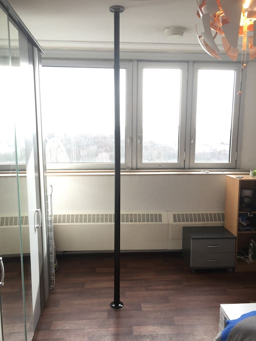 Yes, it is a stripper pole. No, strippers are not included in the room.