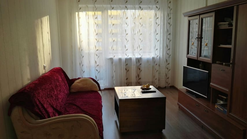 Big and cosy apartment near to the Park - Tallin - Pis