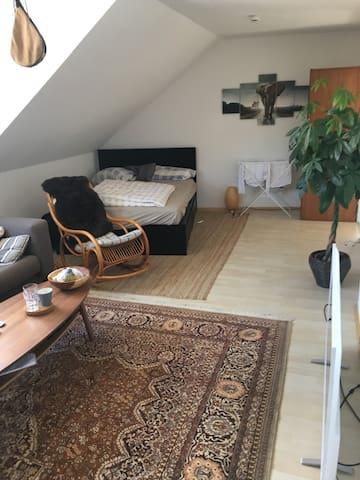 Wohnung im Herzen Bielefelds/Universitätsnah - Bielefeld - Wohnung
