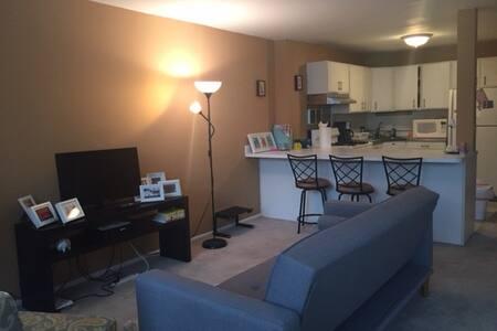 Charming studio apt next to Millenium Park - Apartment