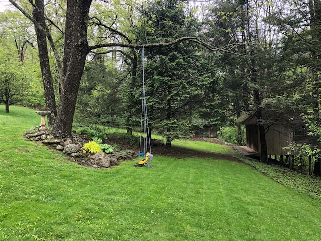 Side yard behind guest house and airplane swing