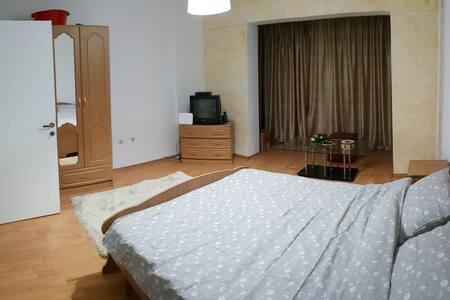 Apartament Central, 1 camera