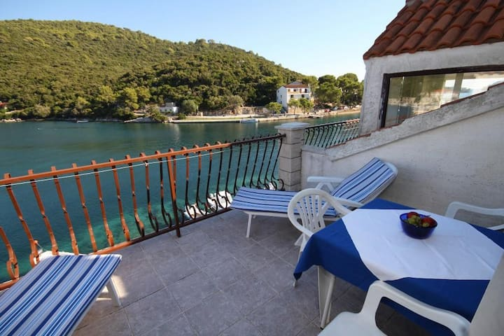 One bedroom apartment with terrace and sea view Pasadur (Lastovo) (A-996-d)