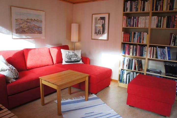 Rum med bäddsoffa och bibliotek