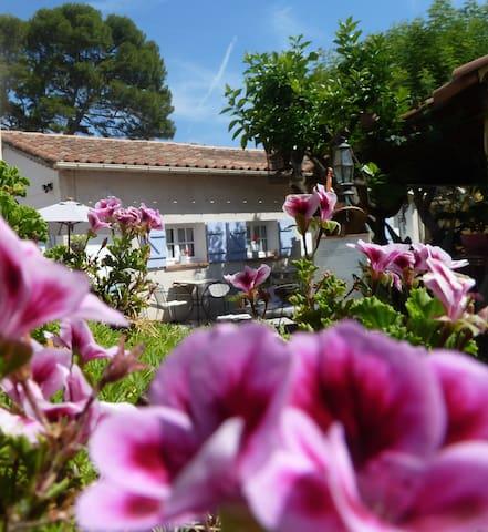 Chambre sur jardin proche mer et vieille ville