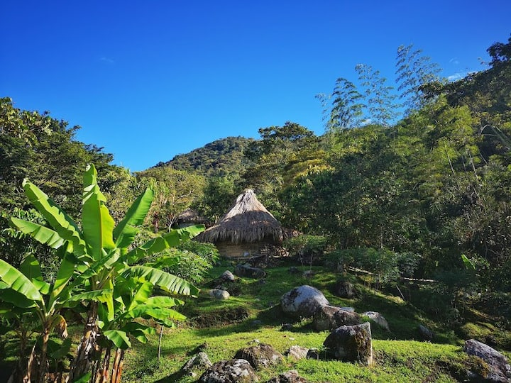 Surrounded by nature: bed and breakfast