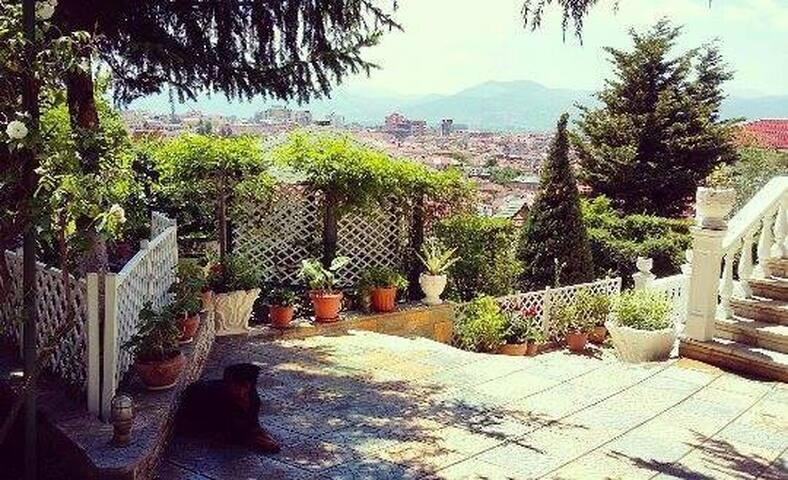 Elena's Villa - Korçë
