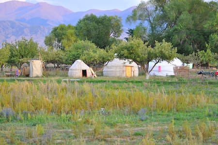 Holiday in Yurt Camp by Issyk Kul - Tong - 蒙古包