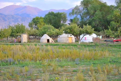 Holidayin Yurt Camp bu Issik-Kyl