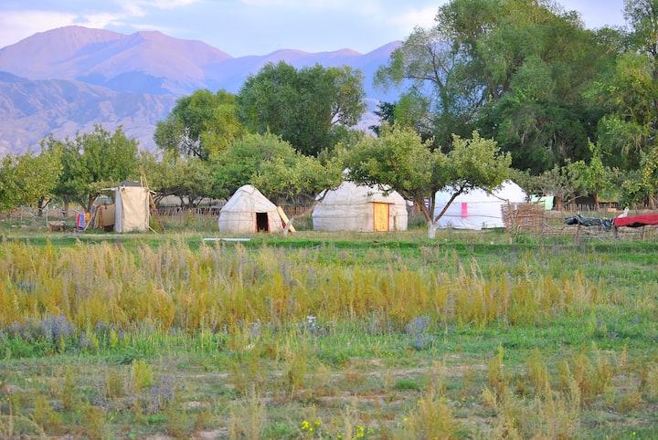 Holidayin Yurt Camp bu Issik-Kyl