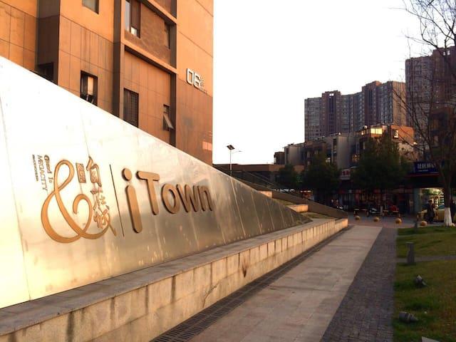 舒适的二居室与附近齐全的配套设施 - 南京市 - Apartment