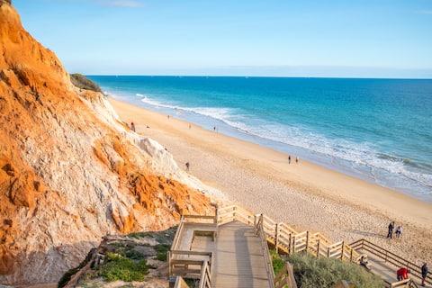 Descubra a praia virgem cercada pela natureza