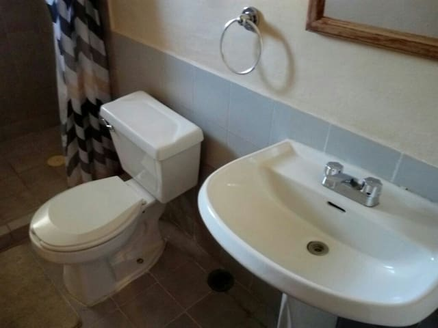 Toilet - Sink and WC