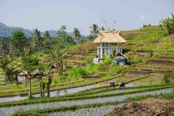 SIDEMEN TWO FLOOR VILLA WITH RICEFIELD VIEW WIRA 6