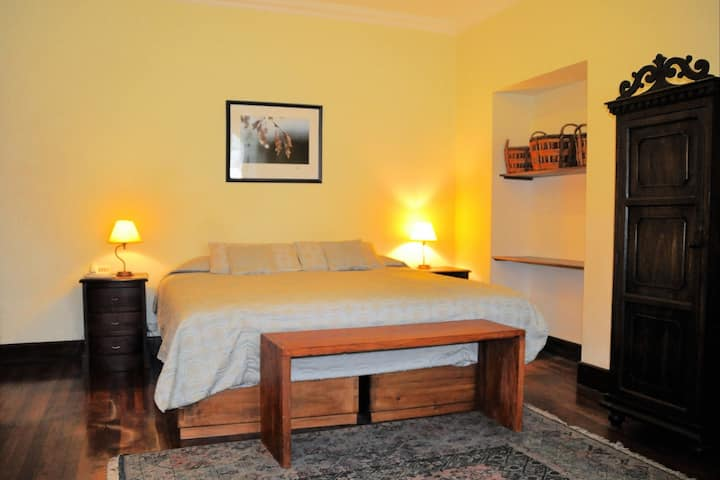 Deluxe King Room at Casa Foch Boutique Hotel