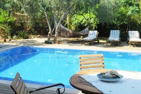 Villa Wise Old Olives: Doğada özel havuzlu sığınak