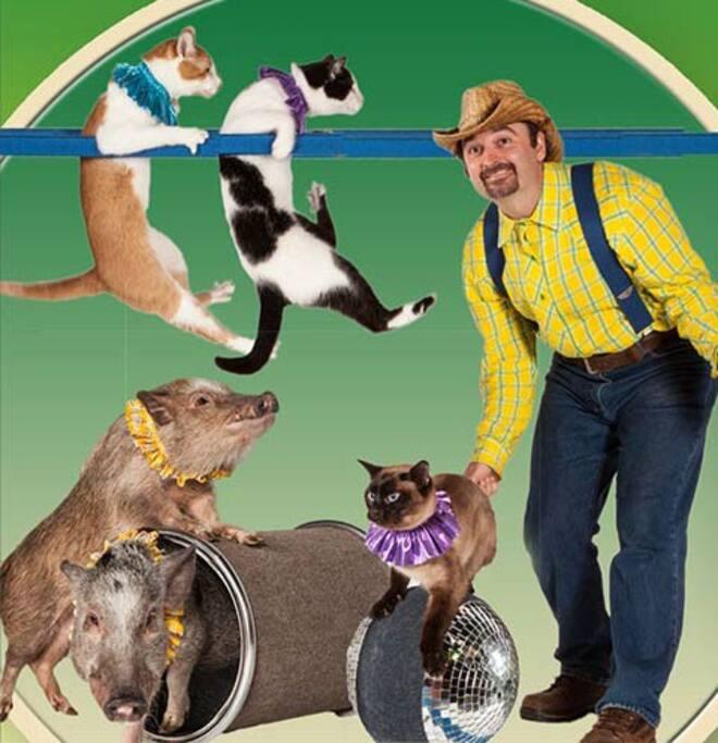 Tennessee Overlook-Amazing Animals Exotic Animal & Pet Show