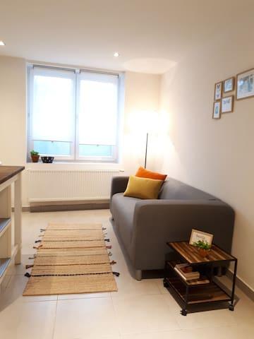 Earl house cozy studio - 100m St-Pieters Station