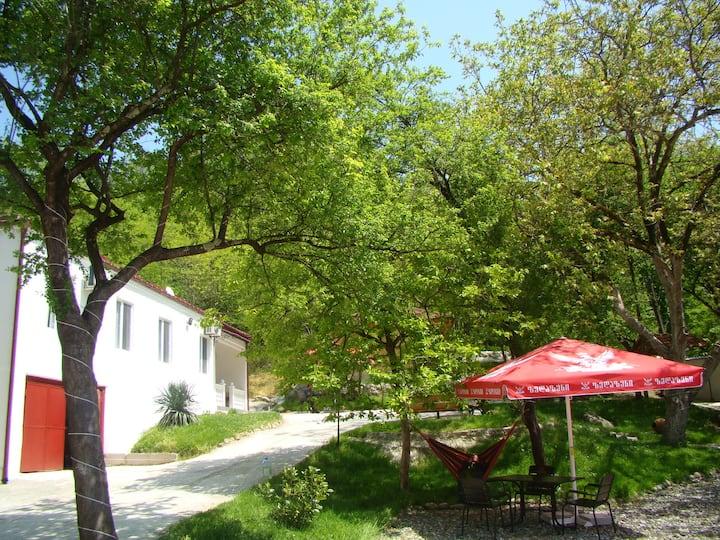 Villa Sataplia (triple room with breakfast)