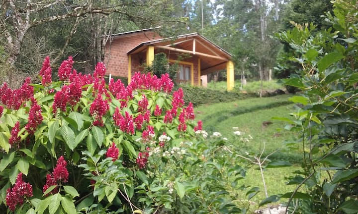 Îtininga Guest House