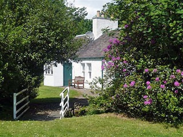 Eallabus Cottage - Bridgend - House