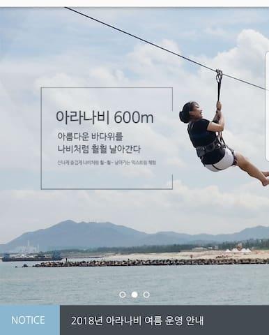 경주#감포#바다 풍경 #오션뷰(ocien view) (2인실)(501)