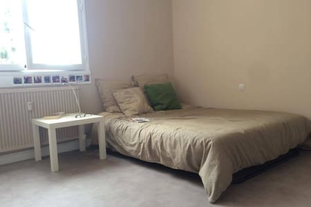 Appartement sympa en plein centre ville de Roanne - Roanne