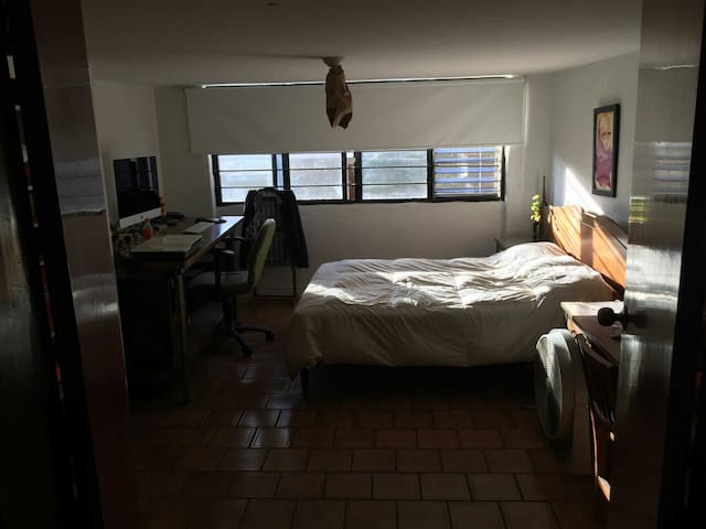 Minerva beautiful room