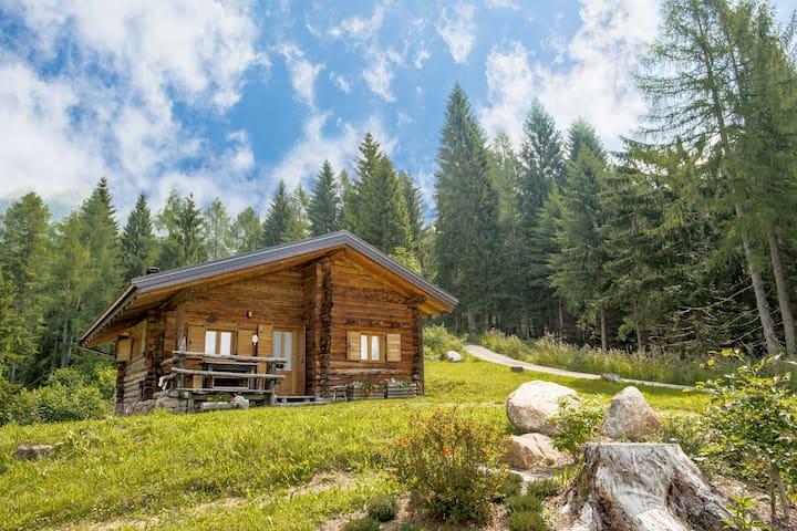 Baita Renzo - Castello Tesino - Cabin