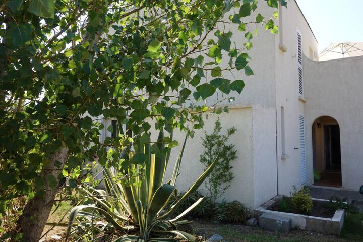 appartement RDC 42 m² - terrasse et jardin