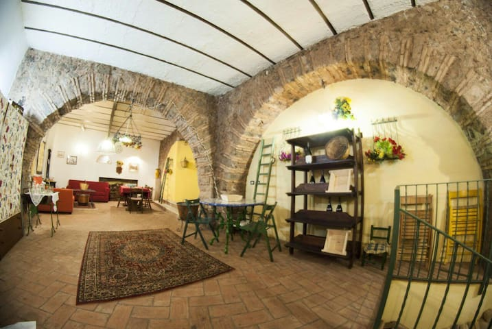 Country style winery on Etna - Mascalucia - Apartament