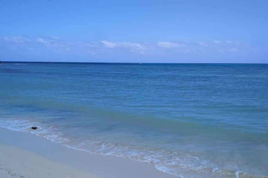 Disfruta del Color Azul del Mar