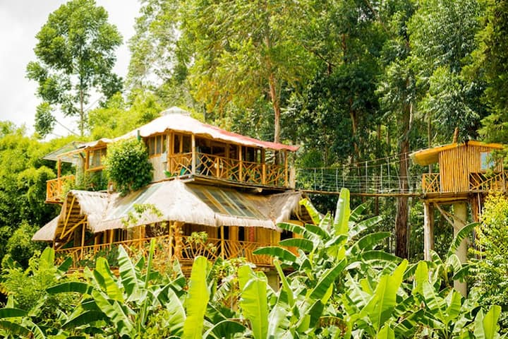 TreeHouse in Chambalabamba Ecovillage