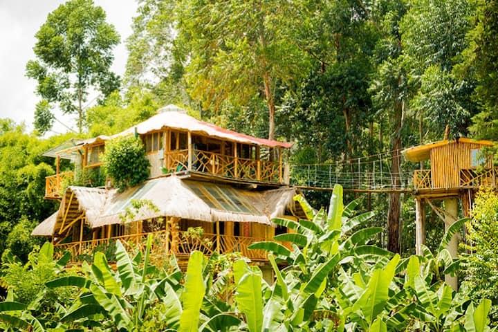 TreeHouse in Chambalabamba Ecovillage