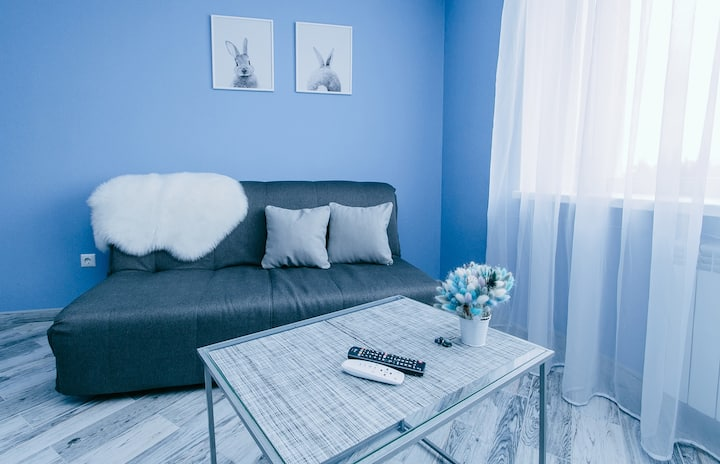Modern 1-Bedroom Apartment in Vinnytsia