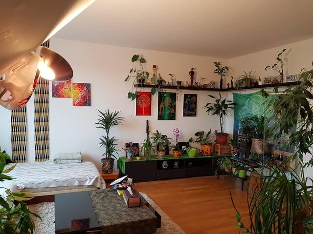 Ruhige gemütliche Wohnung in Wetzikon mit Aussicht