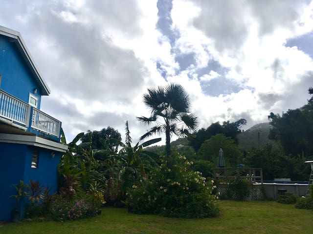 Caribbean Garden Oasis