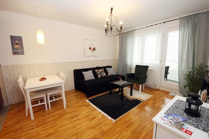 MILA - A stylish apartment near Sarajevo airport