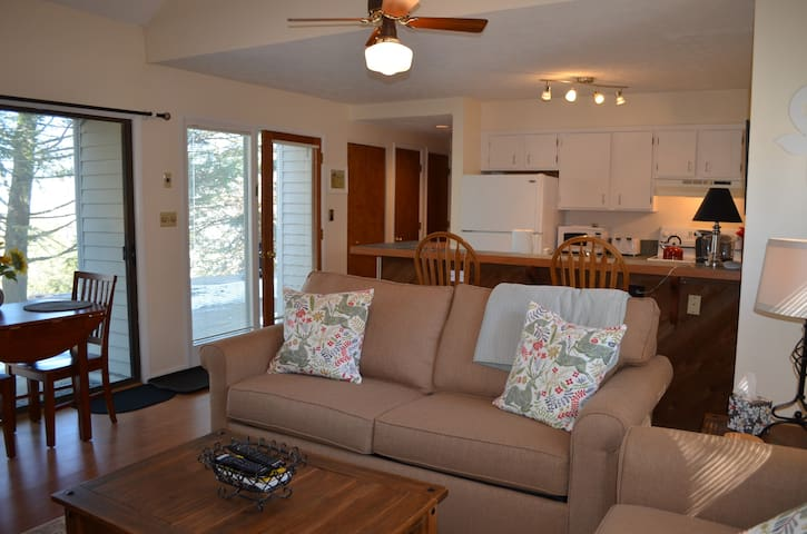 Newly Listed! Cozy & Clean Wintergreen Condo