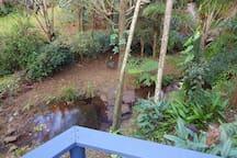 Kondalilla/Montville Rainforest Getaway